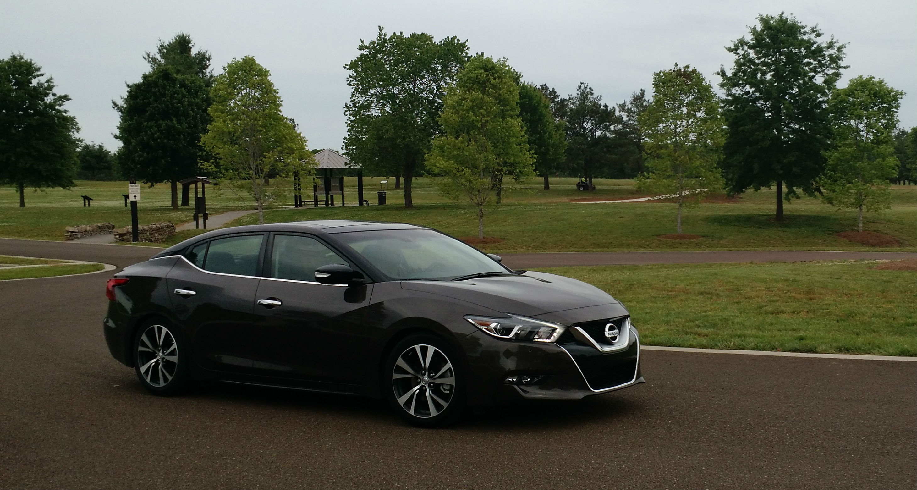 maxima tx forums nissan maximas premium img sale sv package wanted
